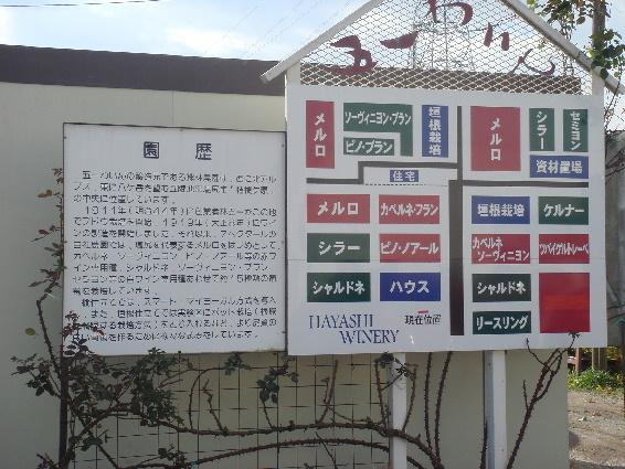 H25-1111shiojiri10